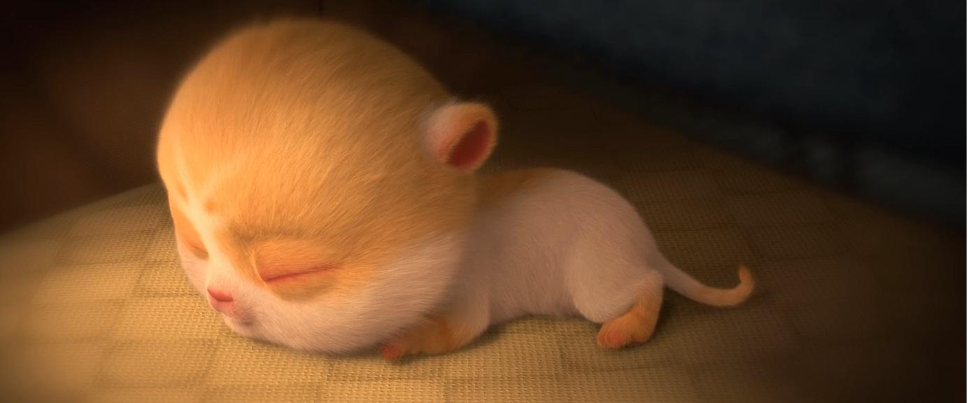 Birba combinaguai film di animazione 2019 - notorius pictures film luglio 2019 famiglia bambini gatti
