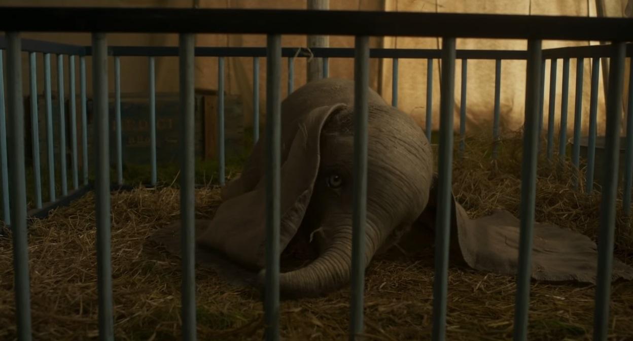 Dumbo 2019 - Dumbo Disney - Film Disney - Film Famiglia - marzo 2019 - elefante Dumbo Tim Burton