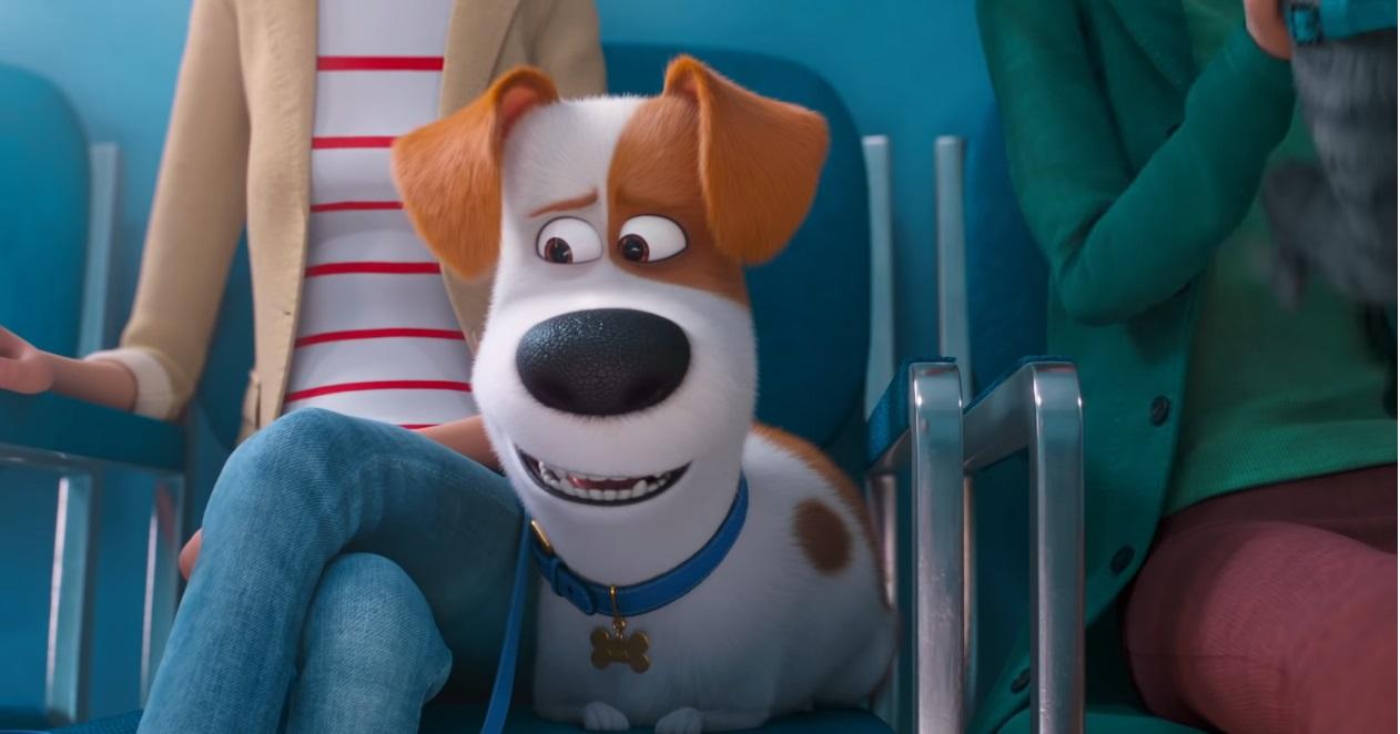 Pets 2 Vita da Animali - Film di animazione 2019 - film famiglia giugno 2019 - Illumination entertainment - The Secret Life of Pets 2