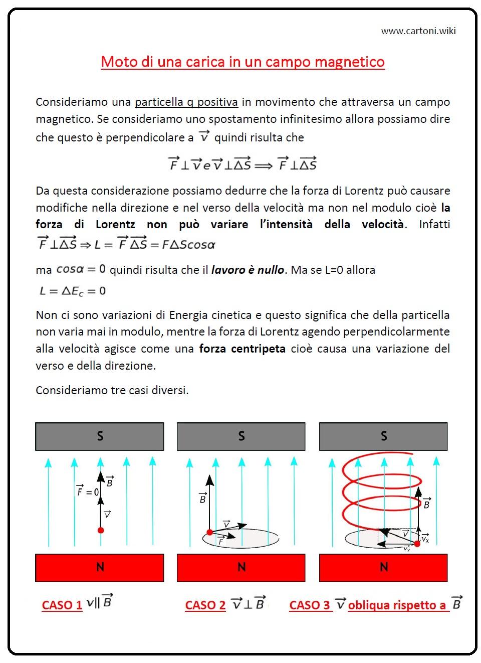 Moto di una carica in un campo magnetico - Cartoni animati