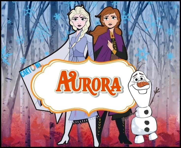 Aurora etichetta quaderni Frozen 2 - Cartoni animati