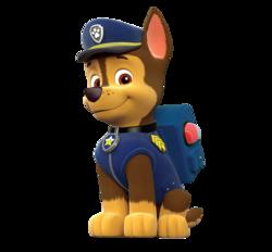 Paw PAtrol - Cuccioli - Personaggi - Chase - cartoni animati - Nick Junior - Sqauadra Paw PAtrol