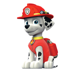 Paw PAtrol - Cuccioli - Personaggi - Marshall - cartoni animati - Nick Junior - Sqauadra Paw PAtrol