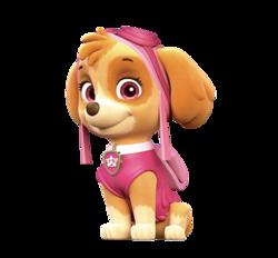 Paw Patrol - Cuccioli - Personaggi - Skie - cartoni animati - Nick Junior - Sqauadra Paw PAtrol