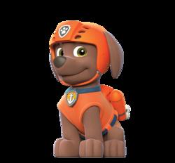 Paw PAtrol - Cuccioli - Personaggi - Zuma - cartoni animati - Nick Junior - Sqauadra Paw PAtrol