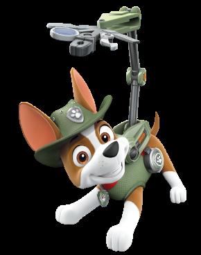 Paw Patrol - Cuccioli - Personaggi - Tracker - cartoni animati - Nick Junior - Sqauadra Paw PAtrol