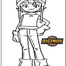 Digimon disegno Sora da colorare - Disegni da colorare