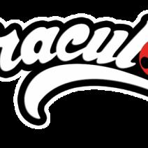 Miraculous Ladybug Logo - Logo