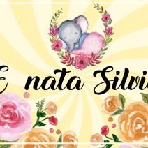 E' nata Silvia - Annuncio nascita
