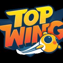 Top Wing Logo png - Logo