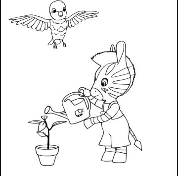Disegno Zou Zebra Da Stampare Cartoni Animati